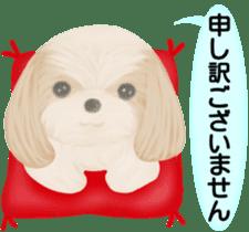 Shih Tzu. Honorific & polite language. sticker #6148841