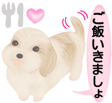 Shih Tzu. Honorific & polite language. sticker #6148848