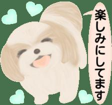 Shih Tzu. Honorific & polite language. sticker #6148851