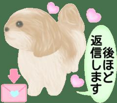 Shih Tzu. Honorific & polite language. sticker #6148852