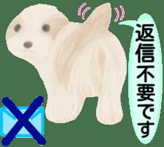 Shih Tzu. Honorific & polite language. sticker #6148853