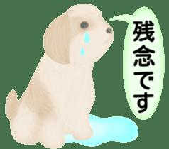 Shih Tzu. Honorific & polite language. sticker #6148860