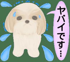 Shih Tzu. Honorific & polite language. sticker #6148862