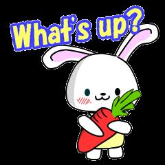 English Rabbit