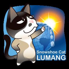 Snowshoe Cat Lumang II (ENG)