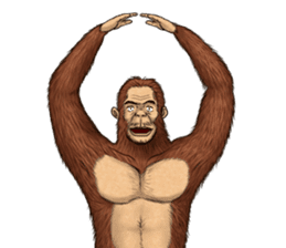 Australopithecus lie-in sticker #6203989