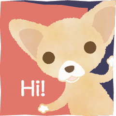 Chihuahua Life