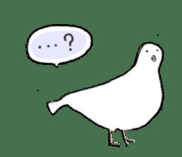 Reaction of pigeon sticker #6237176