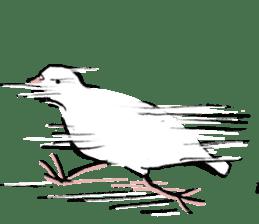 Reaction of pigeon sticker #6237187