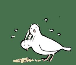 Reaction of pigeon sticker #6237190