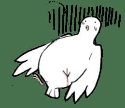 Reaction of pigeon sticker #6237197
