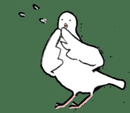 Reaction of pigeon sticker #6237204