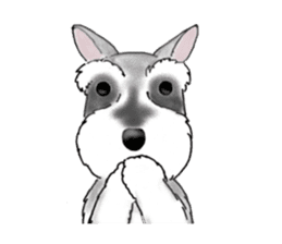 Day-to-day Schnauzer sticker #6241422