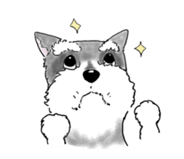 Day-to-day Schnauzer sticker #6241427