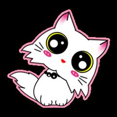 Gigi little white cat