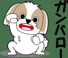 Cute Shih Tzu dog sticker #6275398