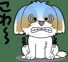 Cute Shih Tzu dog sticker #6275428