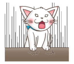 Meany cat Cass for English sticker #6298146