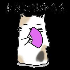 Fatty cat Buchiko