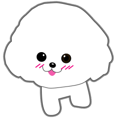 Bichon Frise of Kansai dialect