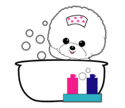 Bichon Frise of Kansai dialect sticker #6328586
