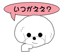 Bichon Frise of Kansai dialect sticker #6328594
