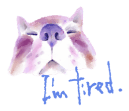Watercolor of dog and cat sticker #6341727