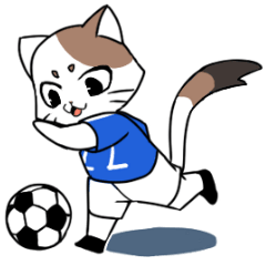 Cat to the soccer