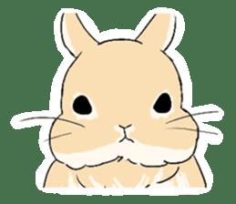 Cute rabbit life sticker #6366315