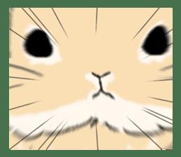 Cute rabbit life sticker #6366316