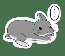 Cute rabbit life sticker #6366319