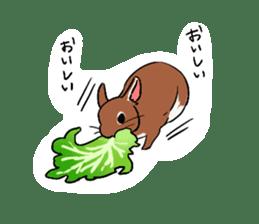 Cute rabbit life sticker #6366325