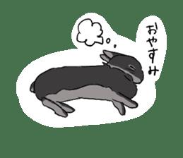 Cute rabbit life sticker #6366331