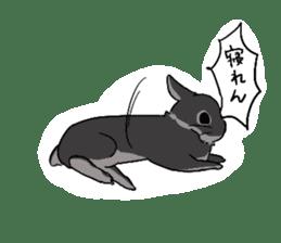 Cute rabbit life sticker #6366332