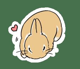 Cute rabbit life sticker #6366334