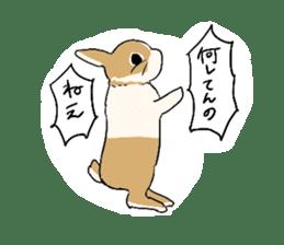 Cute rabbit life sticker #6366338