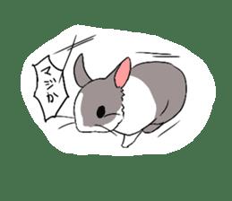 Cute rabbit life sticker #6366341
