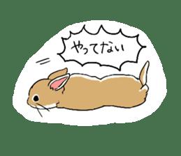 Cute rabbit life sticker #6366342