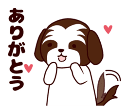 Daily Shih Tzu 2 sticker #6401812