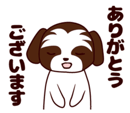 Daily Shih Tzu 2 sticker #6401813