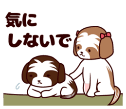 Daily Shih Tzu 2 sticker #6401819