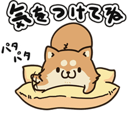 Plump dog Vol.2 sticker #6407805