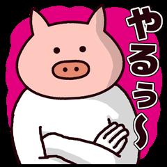 Cute pig!!
