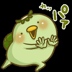 Turn of 'Kappa-san' 4