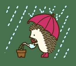 Hedgehog Diary sticker #6447541