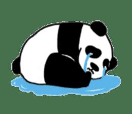 The Zang Panda sticker #6468114