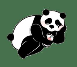 The Zang Panda sticker #6468145