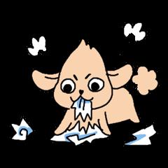 Toy Poodle dog Sticker