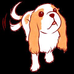 Kawaii Dog!! Cavalier Sticker