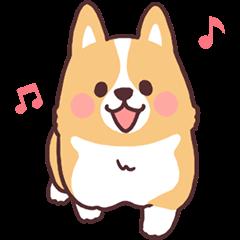 fluffy fat dog2